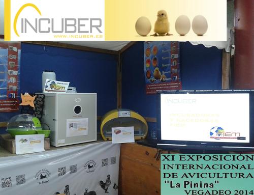 """Incuber se presenta en la XI Exposición Internacional de Avicultura """"La Pinina"""" de Vegadeo."""
